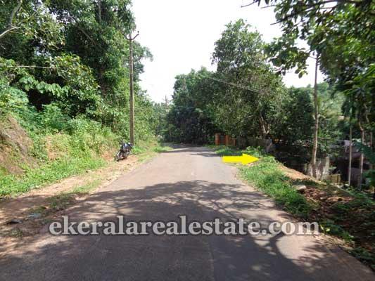 Land and plot in Chenkottukonam Sreekaryam Trivandrum Kerala Properties
