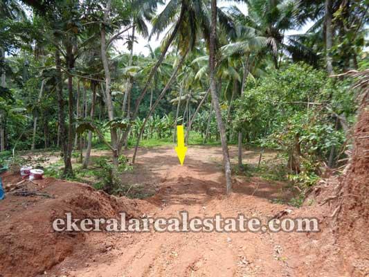 Trivandrum real estate Kerala Commercial land at vizhinjam Trivandrum