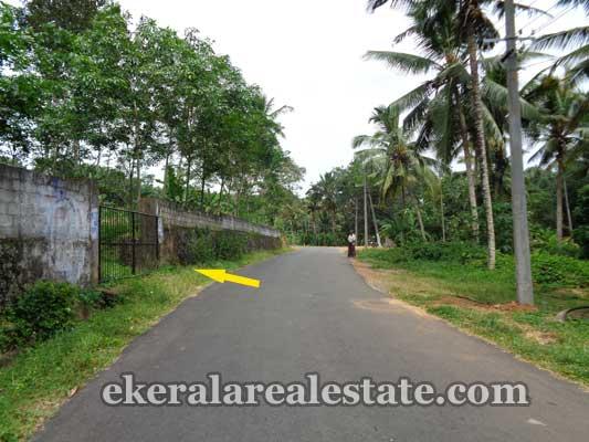 Residential and Commercial Land at Balaramapuram Trivandrum Properties kerala real estate