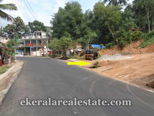 Land near Moongode Thachottukavu Trivandrum real estate kerala