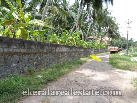 land properties ideal for villas sale in Thannimoodu Balaramapuram  trivandrum kerala real estate