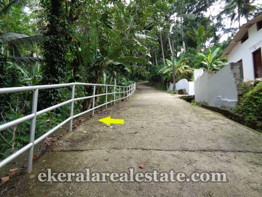 Kallayam real estate land sale in trivandrum Kallayam properties