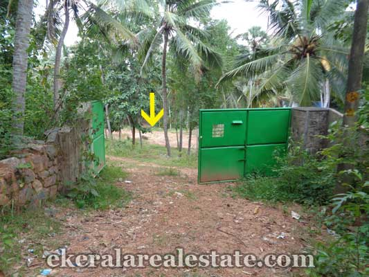 Land and plot at Ookode Vellayani Trivandrum Properties