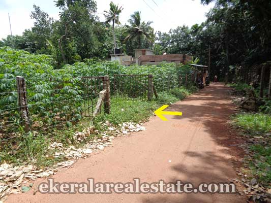 Land and plot at Pulimath Kilimanoor Trivandrum Properties