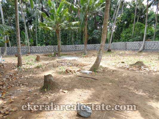 Trivandrum Real estate Kerala Residential land at Thirumala Trivandrum Kerala