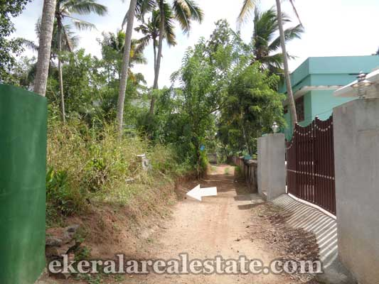Trivandrum Real estate Kerala Residential land in Kariyam Trivandrum Kerala