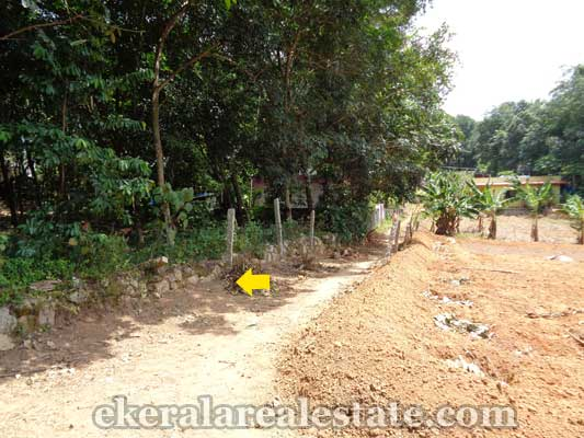 land sale in trivandrum Vellarada house plots for sale Vellarada trivandrum real estate