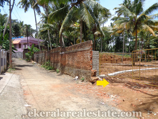 Kerala real estate land sale at neyyattinkara trivandrum for Land for sale in kerala