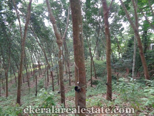kerala real estate 2 acres land sale at Vithura trivandrum kerala real estate properties