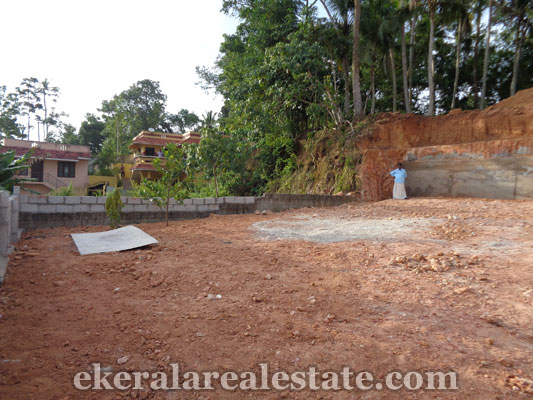 properties in trivandrum land plots sale at Vazhayila land sale in trivandrum