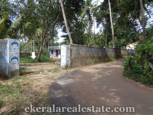 properties in trivandrum land plots sale at Peringamala land sale in trivandrum