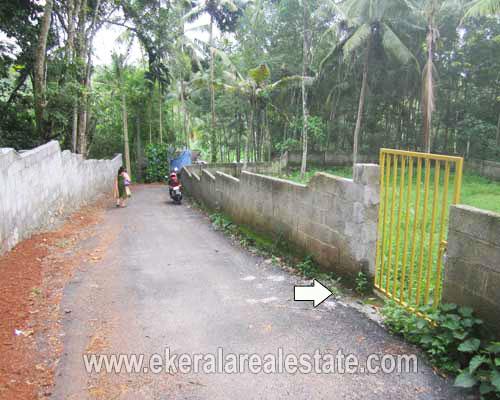 properties in trivandrum land plots sale at Njandoorkonam Sreekaryam land sale in trivandrum
