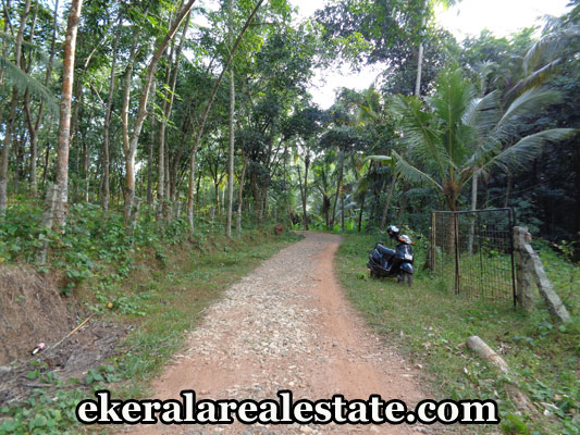 kattakada-real-estate-properties-house-plots-sale-in-kattakada-trivandrum