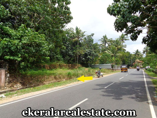real-estate-trivandrum-kilimanoor-land-plots-sale-at-kilimanoor-trivandrum
