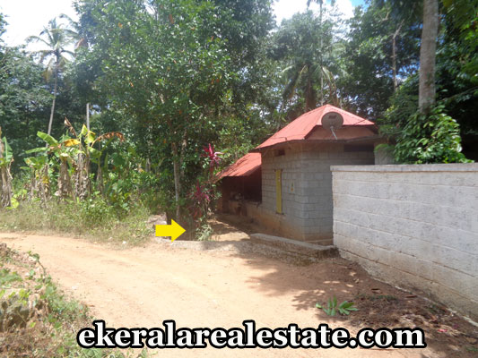 thiruvananthapuram-kilimanoor-land-and-house-sale-kilimanoor-real-estate