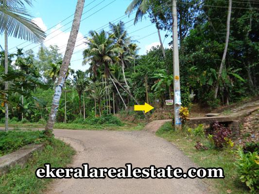 real-estate-thiruvananthapuram-nedumangad-land-plots-for-sale-nedumangad-properties