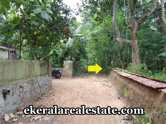 kilimanoor-real-estate-land-plots-sale-at-kilimanoor-trivandrum-properties-in-trivandrum