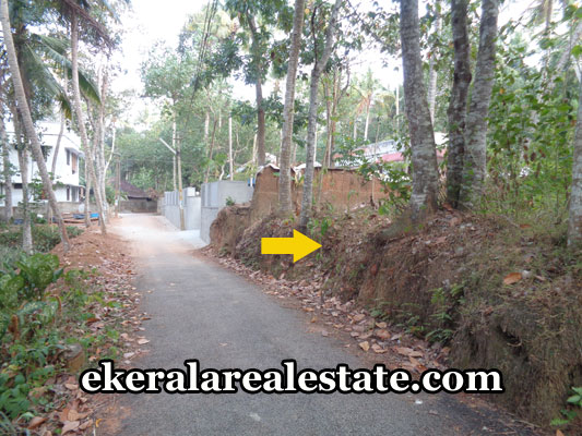 balaramapuram-real-estate-properties-balaramapuram-low-cost-land-sale