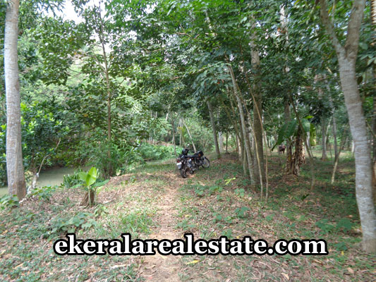 neyyattinkara-properties-land-plots-sale-in-marayamuttom-neyyattinkara-trivandrum-kerala-real-estate-properties