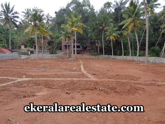 sreekaryam-properties-land-sale-in-pongumoodu-sreekariyam-trivandrum-kerala-real-estate-properties