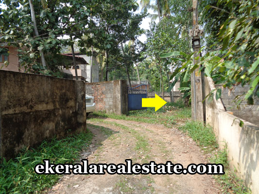 trivandrum-real-estate-property-sale-at-ptp-nagar-vattiyoorkavu-trivandrum-vattiyoorkavu-properties