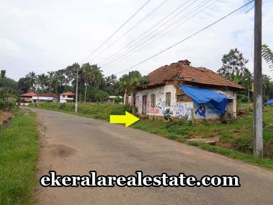thiruvananthapuram-properties-land-sale-at-aryanad-thiruvananthapuram-kerala-real-estate