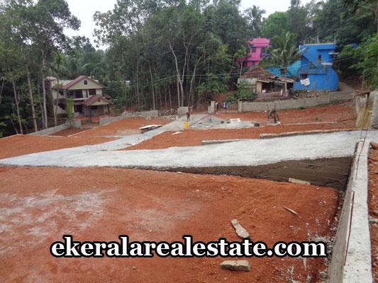 thiruvananthapuram-properties-land-sale-at-malayam-pappanamcode-thiruvananthapuram-kerala-real-estate