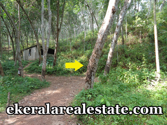 vembayam property sale house land plots sale in vembayam trivandrum kerala real estate