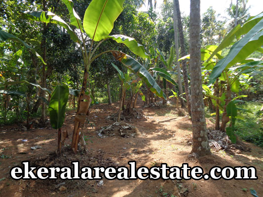 property attingal kerala house land plots sale at attingal trivandrum kerala real estate