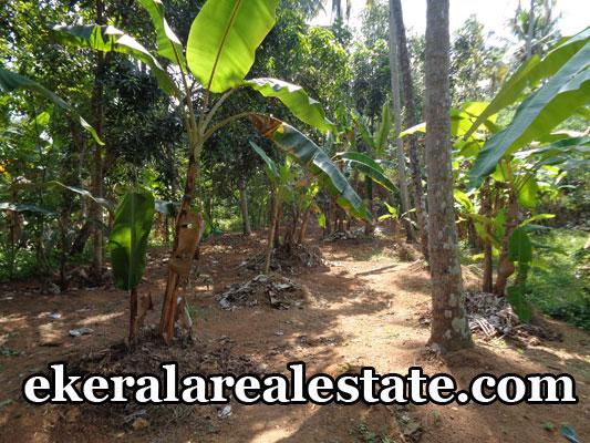 property attingal kerala house land plots sale at attingal trivandrum kerala real estate