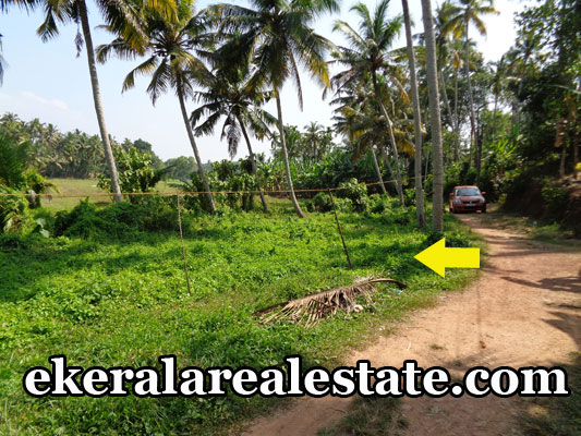 property attingal kerala low price land house plots sale at attingal trivandrum kerala