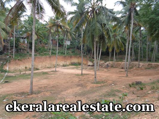 property sale in vellayani low price land in vellayani trivandrum kerala real estate properties