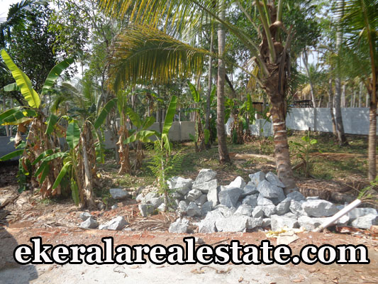 kodunganoor vattiyoorkavu low price land plots sale vattiyoorkavu real estate properties kerala