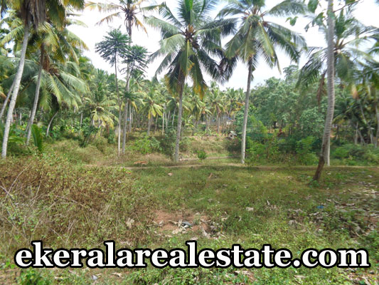 low budget house plots sale at vizhinjam trivandrum kerala real estate properties