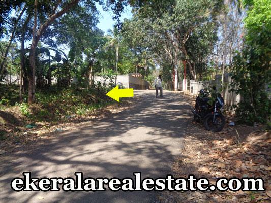 palode real estate properties land plots sale at palode kerala real estate trivandrum