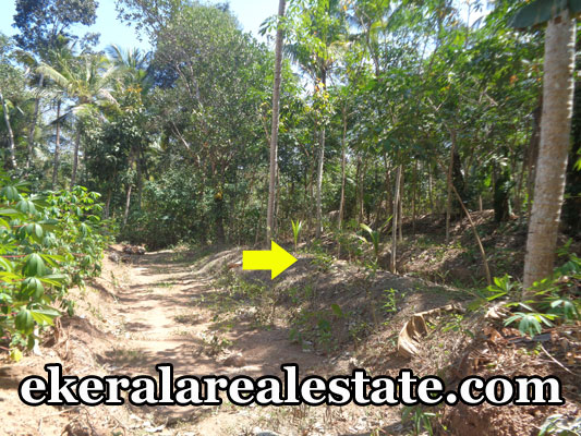 chenkottukonam sreekariyam property sale land house plots sale near chenkottukonam trivandrum kerala