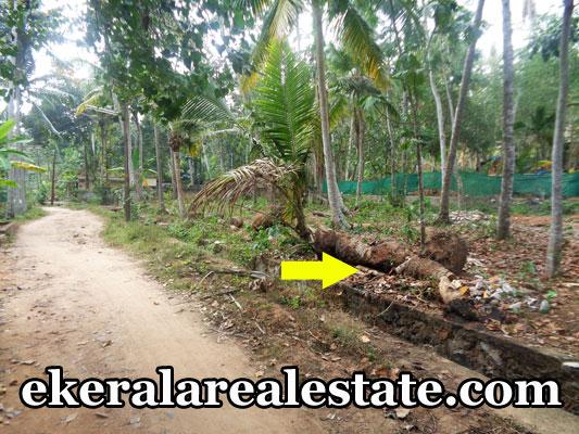 balaramapuram kattachalkuzhi property sale land house plots sale near balaramapuram trivandrum kerala balaramapuram
