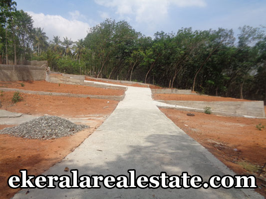 Property sale in pappanamcode trivandrum land plots sale at pappanamcode trivandrum kerala