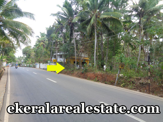 land-sale-in-trivandrum-vizhinjam-plots-commercial-land-sale-at-vizhinjam-mukkola-trivandrum-kerala