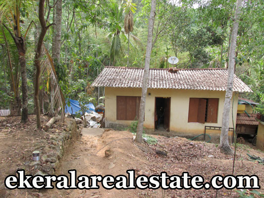trivandrum-house-for-sale-at-Vilappilsala-trivandrum-real-estate-properties-kerala-Vilappilsala-properties