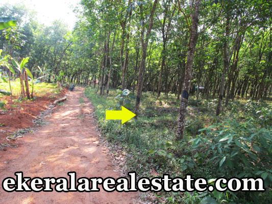 land-sale-in-trivandrum-Venjaramoodu-plots-residential-land-sale-at-Venjaramoodu-trivandrum-kerala
