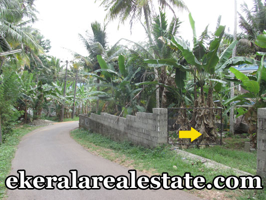 10 cent land for sale at Vattappara Kanakodu trivnadum real estate properties Vattappara Kanakodu