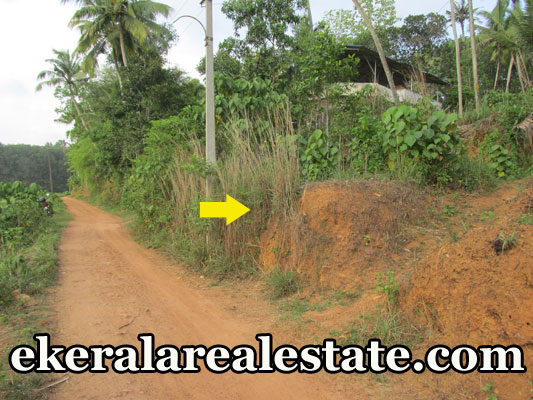 24.5 cent land for sale at Attingal Kaduvayil palli real estate kerala properties trivandrum