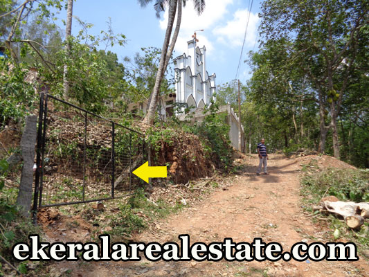 16 cent land for sale at Thachottukavu Moongode Kaithakuzhy trivandrum kerala trivandrum real estate