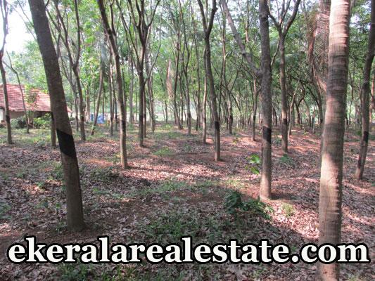 rubber land for sale at Parippally Ezhippuram kerala real estate Parippally Ezhippuram properties