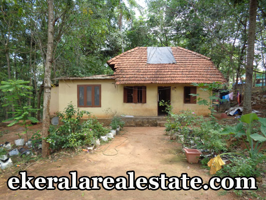 residential land for sale at Malayinkeezhu Mepukada real estate properties Malayinkeezhu Mepukada kerala