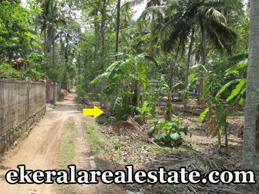 6 lakhs / cent land for sale at Thonnakkal Mangalapuram Safa Auditorium real estate properties