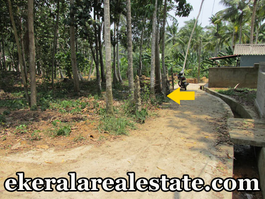 land plot for sale at Neyyattinkara Trivandrum real estate kerala trivandrum Neyyattinkara