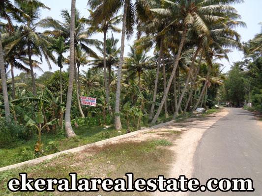 88 cent land sale Muttukadu Venganoor Kovalam real estate kerala trivandrum properties sale