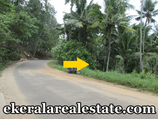 54 cent land for sale Kallayam Mukkola Trivandrum real estate kerala Kallayam Mukkola Trivandrum